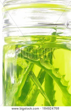 cut aloe leaf in syrup and jar