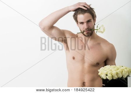 muscular sexy man with rose flower bouquet has strong naked torso isolated on white background handsome guy with undressed body copy space