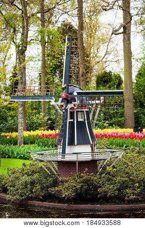 Verical shot of decorative windmill in Keukenhof park, Netherlands, blossom field of tulip flowers