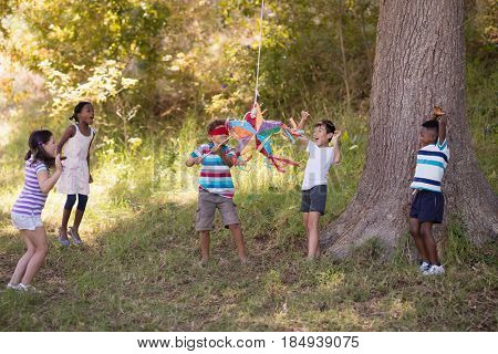 Friends cheering for blindfolded boy hitting pinata hanging on tree in forest
