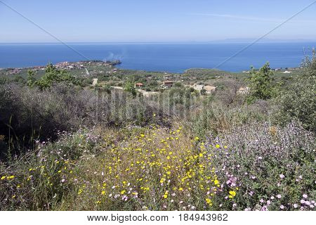 view over agios nicolaos with blue sea and sky in Mani on peloponnese on sunny day in spring with flowers in the foreground