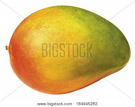 MANGOES, WERE FIRST GROWN IN INDIA OVER FIVE THOUSAND YEARS AGO, BELONGING TO THE FLOWERING PLANT GENUS MANGIFERA