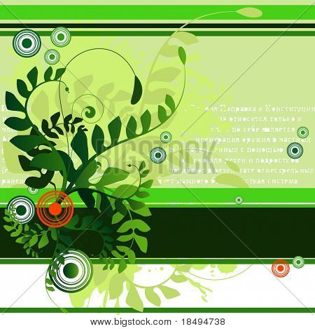 Vector - Floral illustration with vines and ferns. Blank space for your text.