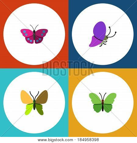Flat Monarch Set Of Archippus, Milkweed, Summer Insect And Other Vector Objects. Also Includes Butterfly, Milkweed, Moth Elements.