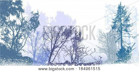 Panoramic winter forest landscape with silhouettes of snowy trees, plants and bushes. White, blue, gray and green landscape with snow, bare trees and conifers