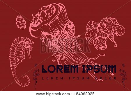Hand drawn linear marine life set. Shells, shellfish, seahorse, corals, jellyfish. Sea for menu, textiles. Symbol marine icon Aquqrium underwater Colorful