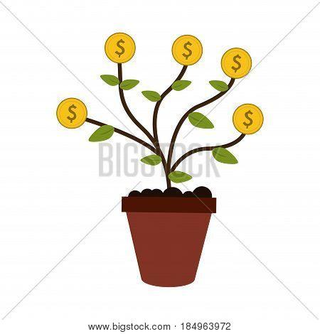 money plant in pot icon image vector illustration design