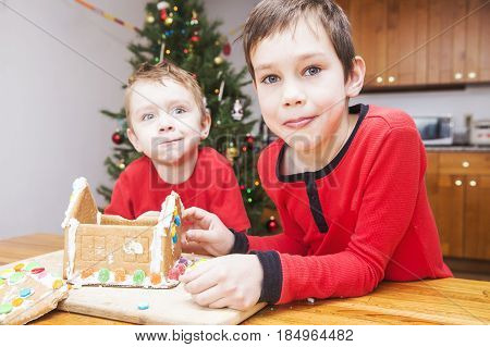 Children eat gingerbread house. Two boys playing with ginger bread under Christmas tree