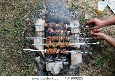 Shish kebab roasted on charcoal in nature on a summer day