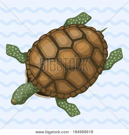Sea turtle cartoon animal sea wildlife ocean green underwater swim reptile vector illustration. Hawaii tropical aquatic marine wild cute nature character funny mascot.
