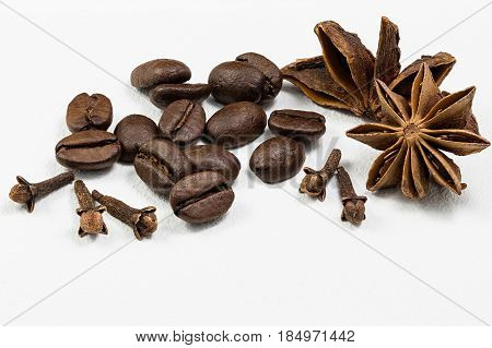 Cardamom, grains of coffee and carnation on a white background