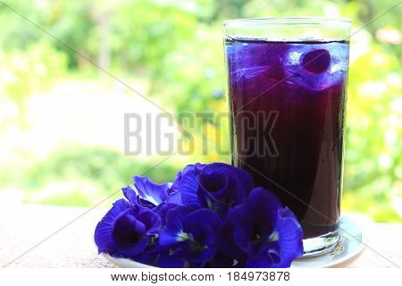 Cool butterfly pea juice look fresh and sweet