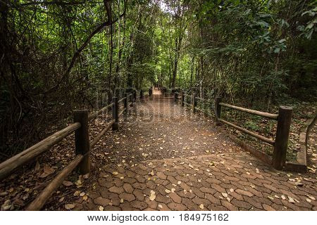 Brick Way into a Forest in Brasilia Brazil poster