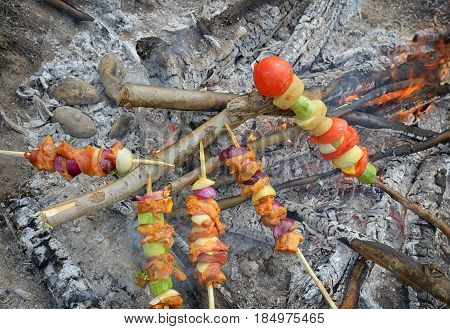 Stick of barbeque roasting in fire, close up