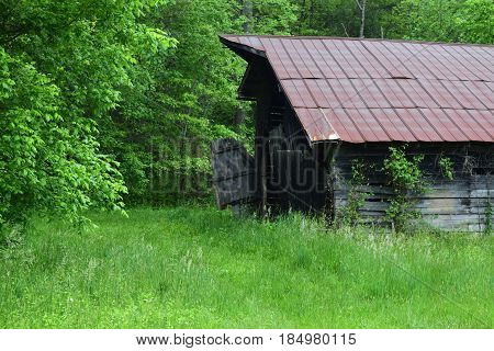 Old country and metal roofed barn with long grass