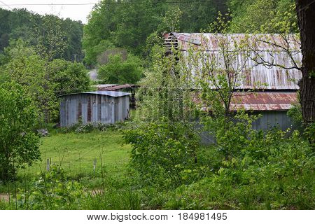 Two old barns surrounded by trees and grass