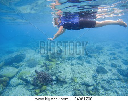 Snorkeling woman and sea tortoise underwater photo. Green turtle with swimming woman in full face mask and snorkeling wear. Exotic sea animal. Tropical vacation sport activity. Sea turtle in nature