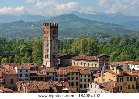 Aerial view of the ancient town of Lucca with the Basilica of San Frediano (XII century). Toscana (Tuscany) Italy Europe