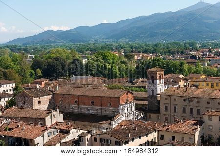 Aerial view of the town of Lucca Toscana (Tuscany) Italy with the church of Santa Maria Forisportam (XII century). View from the Guinigi tower