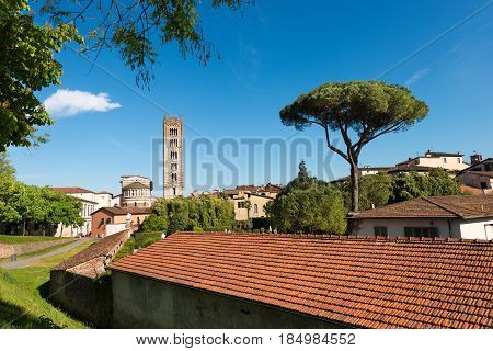 The ancient town of Lucca with the Basilica of San Frediano (in romanesque style - XII century). Toscana (Tuscany) Italy Europe