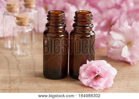Two Bottles Of Essential Oil, With Pink Japanese Cherry Blossoms In The Background
