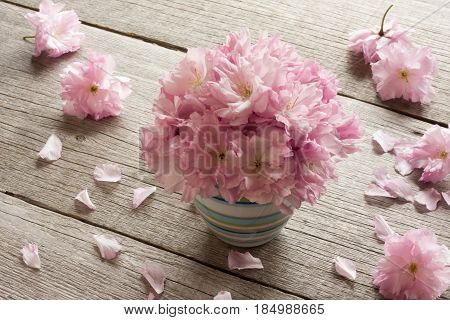 Pink Kwanzan cherry blossoms on a wooden table