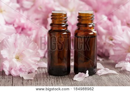 Two Bottles Of Essential Oil With Pink Japanese Cherry Blossoms In The Background