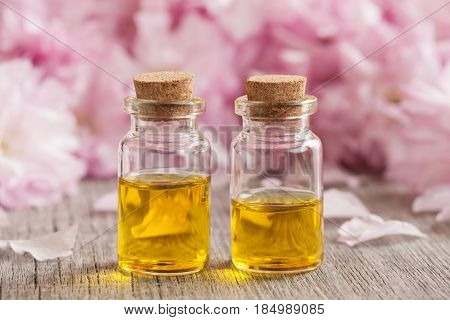 Two bottles of essential oil with pink cherry blossoms in the background