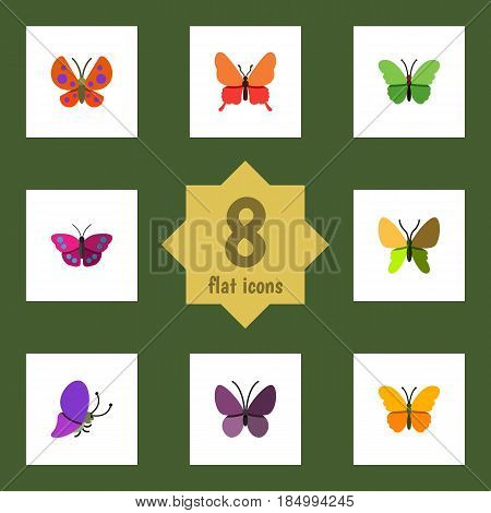 Flat Moth Set Of Beauty Fly, Moth, Archippus And Other Vector Objects. Also Includes Butterfly, Monarch, Moth Elements.