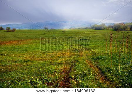 Green Field High in Mountains, Bosnia and Herzegovina