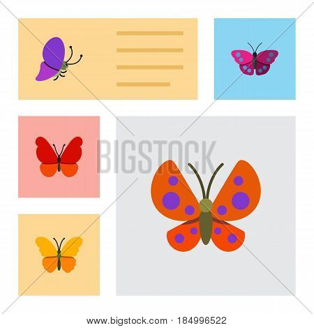Flat Moth Set Of Archippus, Moth, Butterfly And Other Vector Objects. Also Includes Monarch, Butterfly, Archippus Elements.