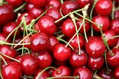 Spring. Fresh cherry fruit. Closeup Cherry background. poster