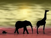 Silhouettes of three animals wandering in the desert poster