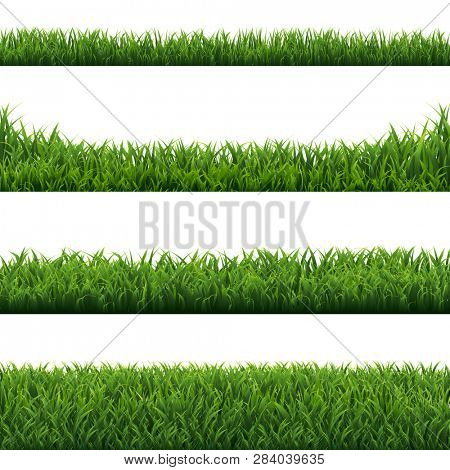 Green Grass Borders Set White Background