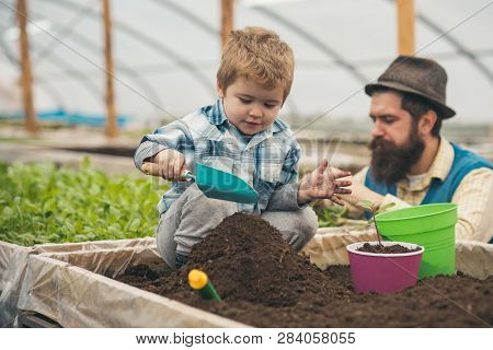 Play With Ground. Small Child Play With Ground. Play With Ground In Greenhouse. Father And Son Play
