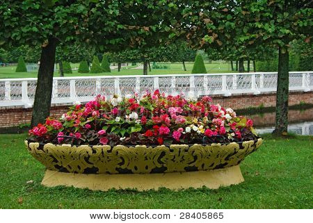 Flowerbed Full Of All Colors Flowers