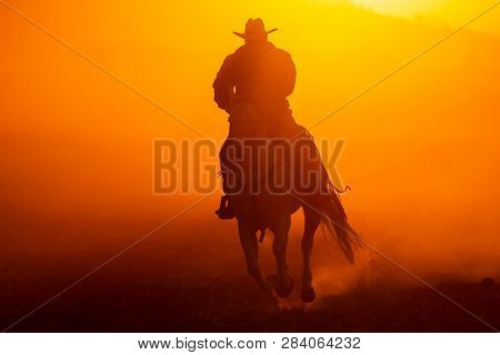 A Mexican Charro rounds up a herd of horses running through a field on a Mexican Ranch at sunrise