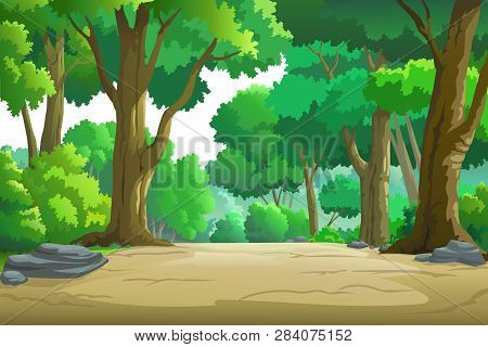 Vector Images Of The Forest In The Daytime