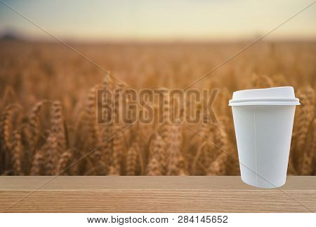 Bio Pla Paper Cup Placed In Front Of The Corn Field.