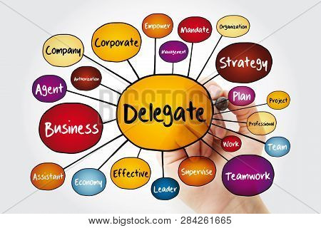 Delegate Mind Map Flowchart With Marker, Business Concept For Presentations And Reports