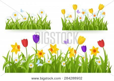 Spring Grass Border With Early Spring Flowers And Butterfly Isolated On White Background. Illustrati