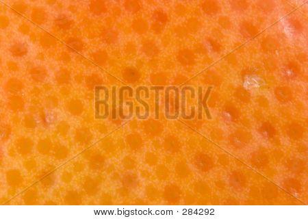 Texture Of Grapefruit Skin