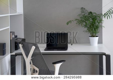 Modern laptop and office equipment on a table and shalves. Daylight office interior with orthopaedic chair, white furniture and greenery pot on a desk.