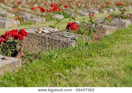 Cemetery In Terezin
