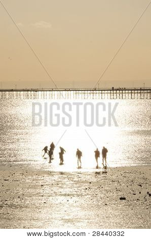 Silhouetted Family Playing On Beach