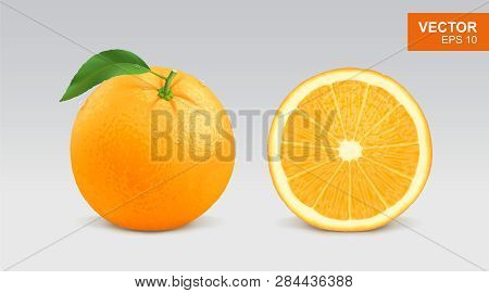 Realistic Fresh Orange Vector Illustration, Icon. Whole And Half Slice Of Orange Citrus Fruit With G