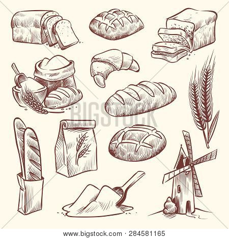 Bread Sketch. Flour Mill Baguette French Bake Bun Food Wheat Traditional Bakery Basket Grain Pastry