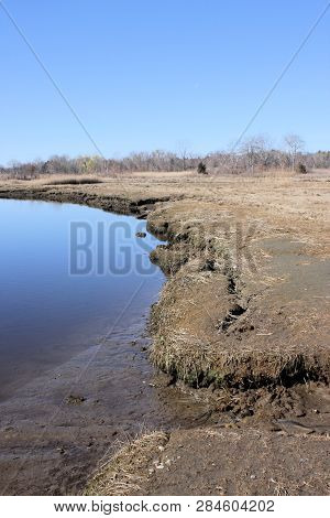 Mucky And Muddy Shoreline Of A Brackish Water Inlet At Low Tide.