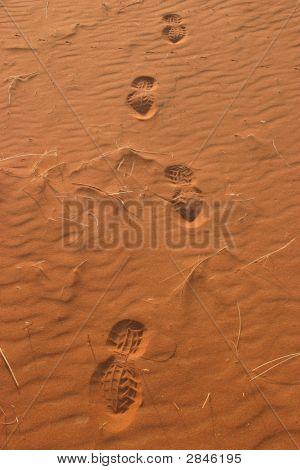 Desert Footsteps