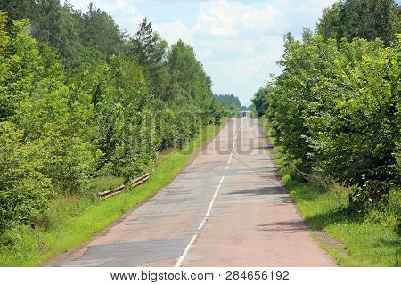 Empty Asphalted Road And Green Roadsides With Bushes. Empty Highway. Overgrown Highway. Road With De